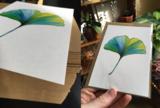Postcard 'Persian Silk Tree'_